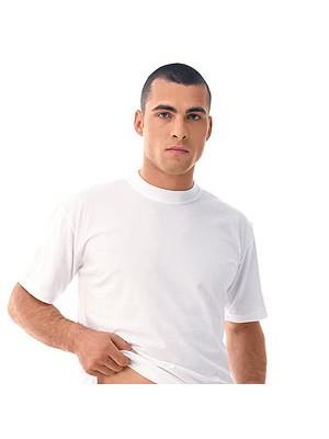 Moška majica 590-332 Galeb kr. rokav